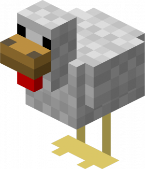 File:Chicken Picture.png