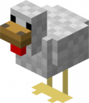 Chicken Picture.png